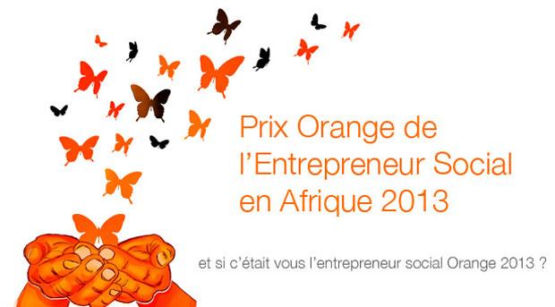 prix-orange-entrepreneur-social-afrique-2013